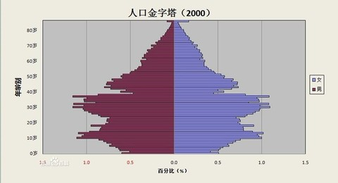 excel人口金字塔_人口金字塔