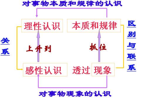 电路 电路图 电子 原理图 480_333