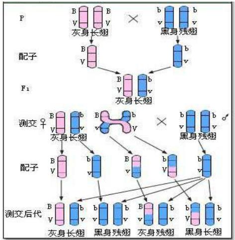 电路 电路图 电子 设计 素材 原理图 473_483
