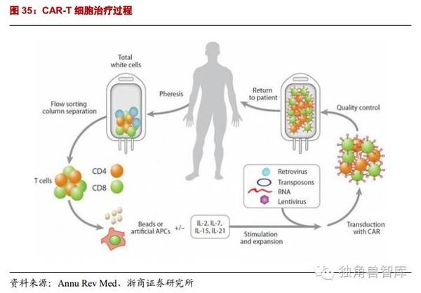 细胞转染实验步骤