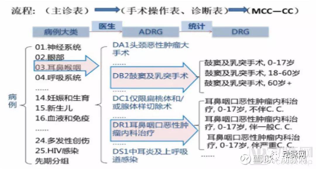 drg分组逻辑按四个层级分类:第一层为临床系统部位的诊断类别;第二层