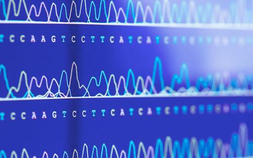 素雪醉颜相思眉间: 九大基因测序平台对比 1.s
