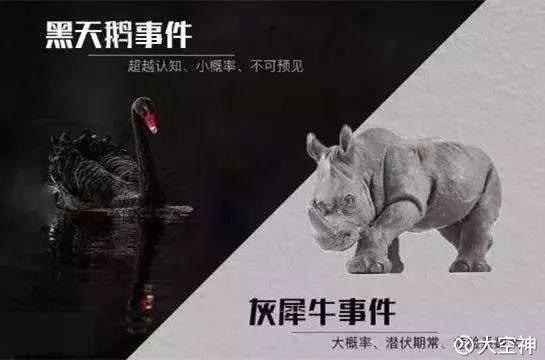 大空神: 灰犀牛vs 黑天鹅事件--关于经济危机的