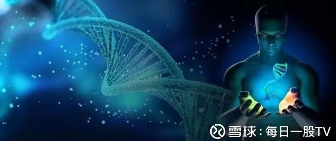 通过转基因婴儿事件看国内基因产业格局