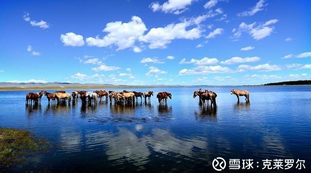 蒙古2018年GDP861亿元,约占我国内蒙古GDP