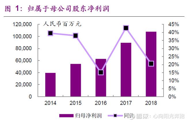 中国平安2018年报解读 —— 寿险业务状况